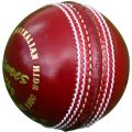 KD Grandes XT 2 piece Leather Cricket Ball
