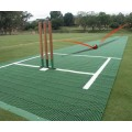 Flicx Portable Cricket Pitch