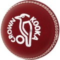 Kookaburra Practice Leather 2 Piece Ball