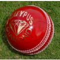 Platypus Diamond Leather 4 Piece Cricket Ball