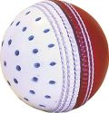 Reverse Swing Leather Cricket Ball