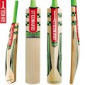 Gray Nicolls 900 Cricket Bat