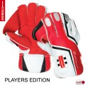 Gray Nicolls Players Edition Wicket Keeping Gloves